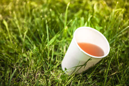 Cup of green tea on green grass during coffee break in hot summer day with copy space Imagens