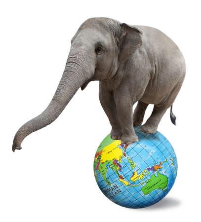 Circus elephant balancing on a big colorful globe isolated on white background