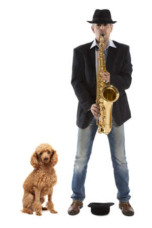 Man playing on saxophone  and red  poodle on a white background  photo