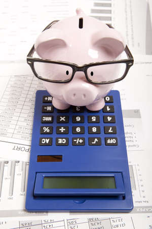 piggies: Pink piggy bank and calculator