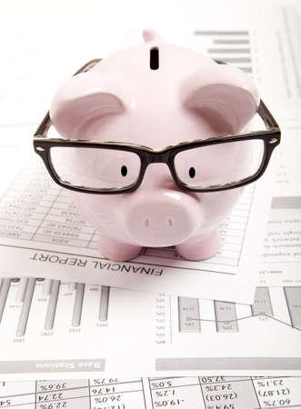 Rose tirelire et rapport financier