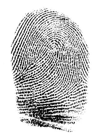 fingermark: Real fingerprint in white background Super macro
