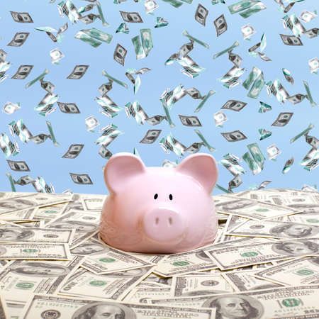 piggies: Piggy bank in a pile of dollars