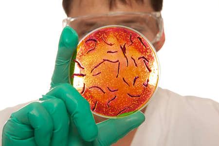 Scientist holding a petri dish with virus cells Standard-Bild