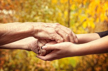 Herbst. Hände einer ältere Frau die Hand einer jungen Frau, die Standard-Bild