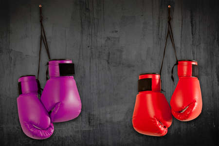 Pair of purple boxing gloves hanging on wall Stock Photo