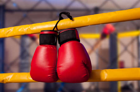 padding: Pair of red boxing gloves hangs off the boxing ring