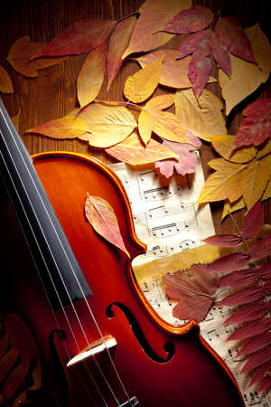 Violin in vintage style on wood, notes, autumn leaves background Stok Fotoğraf