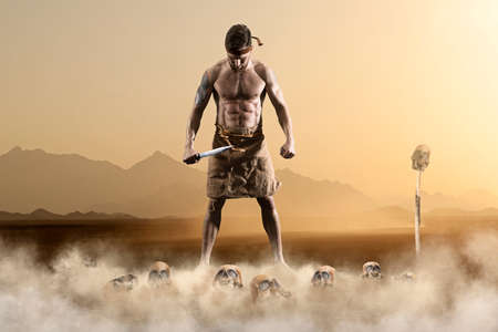 Warrior with sword on epic background dramatic desert landscape 免版税图像