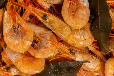 Cooked Atlantic prawns flow around in a stainless steel colander.