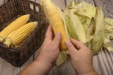 Hands of a man cleaning an ear of corn on a wooden background. Autumn harvest, Healthy food, Fitness diet. Close up