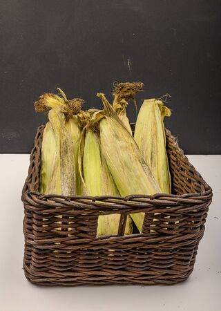 A few untreated ears of corn in a wicker basket on a white background. Autumn harvest, Healthy food. Fitness diet. Close up Zdjęcie Seryjne