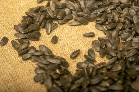Fried sunflower seeds in bulk on a background of coarse-textured burlap. Close up