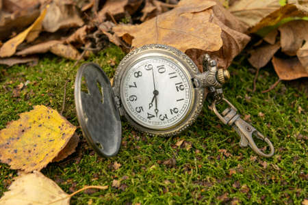 Vintage pocket watch on the last green grass surrounded by yellow autumn leaves, Close-up Banco de Imagens