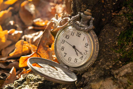 Vintage pocket watch in yellow autumn leaves, Close-up
