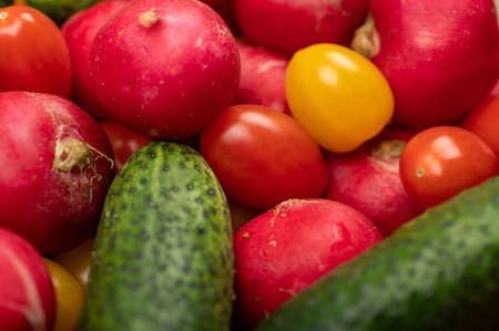 Green cucumbers, ripe radishes and colorful tomatoes scattered on the table. Close-up, selective focus