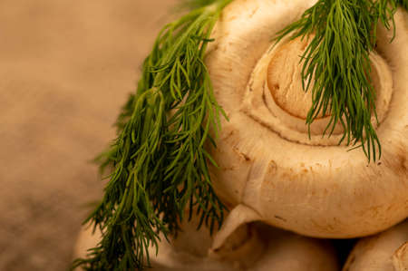 Fresh young mushrooms and juicy green dill on the table. Close-up selective focus. Stock Photo