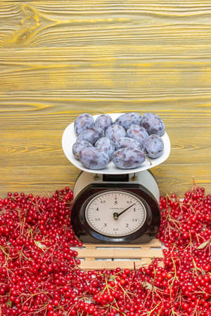 Plums are on the scales on the background of berries. Imagens