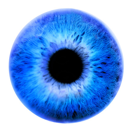 Huge blue pupil on a white background. Front view Stock Photo