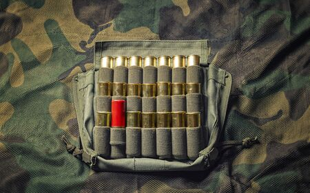 Set of cartridges for a shotgun. One cartridge is higher than the rest in the case. Business concept of leadership, high management, recruiting. Mixed media Stockfoto
