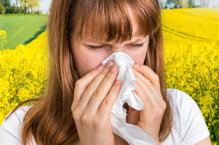 Woman with allergy on yellow rape field sneezing in tissue - blooming rapeseed field and allergy Stock Photo