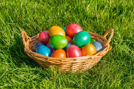 Colorful eggs in a basket on the green grass