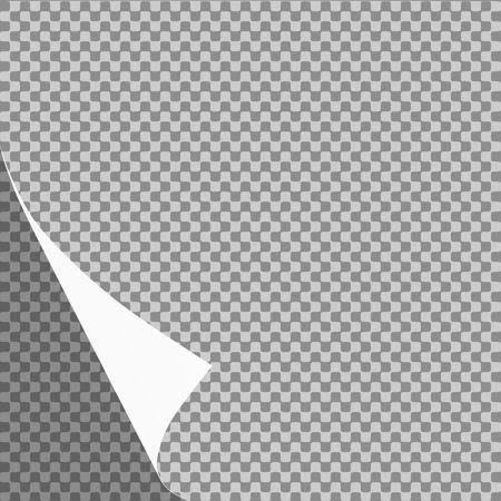 Curled Paper Blatt Ecke oder Seite curl mit Schatten auf transparenten Hintergrund - Vektor-Grafik