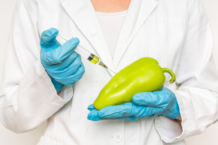 toxic substance: GMO scientist injecting liquid from syringe into pepper - genetically modified food concept