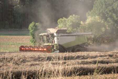 Combine harvester harvesting on wheat field - agricultural concept Banque d'images
