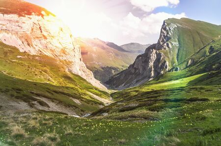 Beautiful grassy valley in the Macedonian mountains
