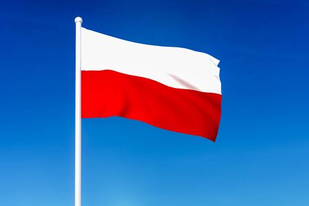 Waving flag of Poland on the blue sky background - 3D rendered Reklamní fotografie