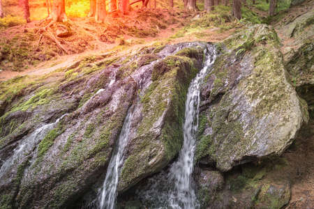 Mountain waterfall in green forest at summer time Stockfoto