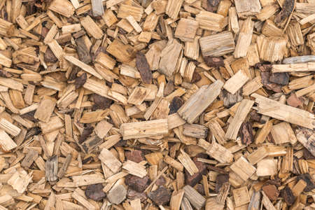 Background from timber sawdust chips - organic wooden surface on the ground
