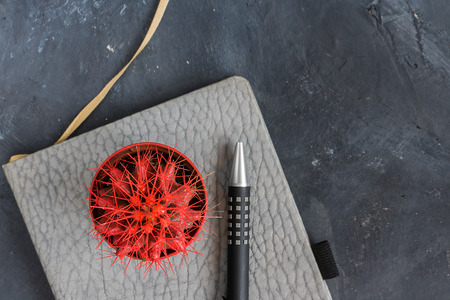 Small red cactus on the grey leather notebook and black pen with metal details next to ir. Horizontal. Top view.