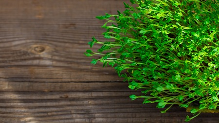 Fresh green watercress microgreens on wooden rustic brown background with copy space Banco de Imagens - 122173263
