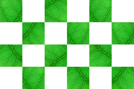 Green nerved leaf cubes with abstract pattern on white background. Abstract background for botany, biology, ecology. Horizontal