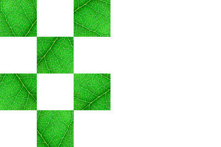 Green nerved leaf cubes with abstract pattern on white background. Abstract background for botany, biology, ecology. Horizontal with copy space