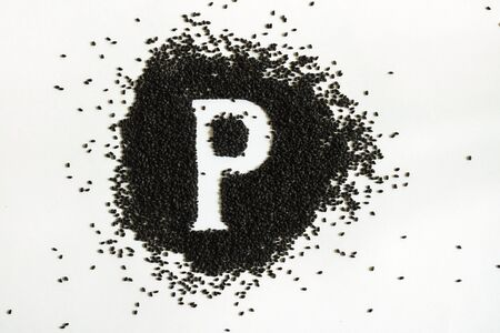 Handful of sweet basil black seeds, letter P uppercase of English alphabet on white background. Black and white. Lettering. Typography. Healthy and super food. Horizontal