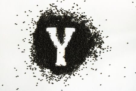 Handful of sweet basil black seeds, letter Y uppercase of English alphabet on white background. Black and white. Lettering. Typography. Horizontal. Healthy and super food.