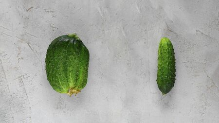 Fresh Ugly triple green organic and normal cucumber on grey cement background with copy space. Food concept of Buying imperfect product to reduce waste. Banner with Vegetable with unusual shape