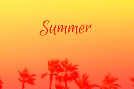 Coconut palm tree on background of beautiful dawn or sunset sky in orange and coral red colors. Horizontal with copy space, word SUMMER on it. Trendy bright duotone. Travelling and holiday concept