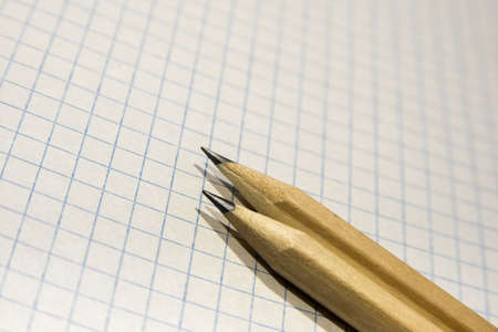 two pencils lie on a piece of paper in a cage, close-up, checkered background Archivio Fotografico