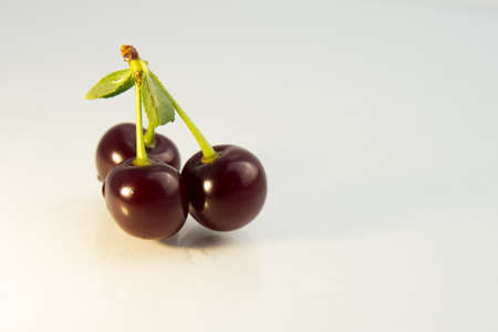 large ripe cherry berries on a white background with water drops green leaf and branch close-up Zdjęcie Seryjne