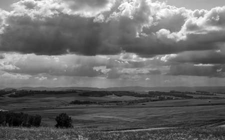 black and white landscape agricultural fields, forest, road, sunlight breaking through the clouds Zdjęcie Seryjne