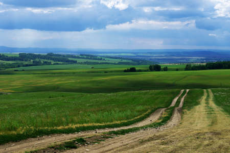 field dirt road goes into the distance through agricultural fields with green grass past the forest, the blue sky large dark clouds, landscape
