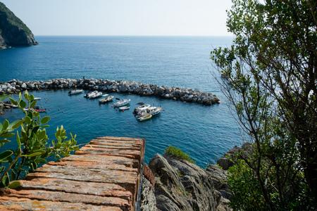 The port of Riomaggiore seen from the cliff, Cinque Terre, La Spezia, Italy Banco de Imagens - 133426069