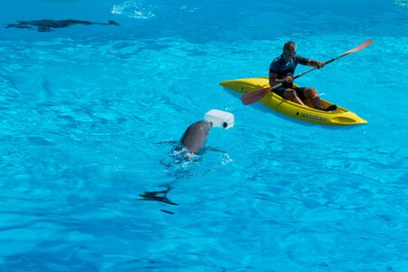 A man in a lifeboat floating next to the dolphins Stock Photo - 140760081