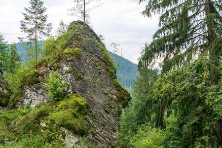 Rocks that surround the bears' cave, Fairies Garden, Borsec, Romania