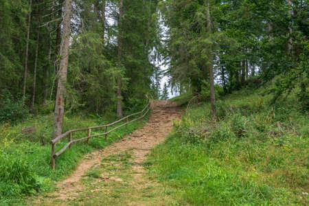 A path from the Fairies Garden, Borsec, Romania Stock Photo