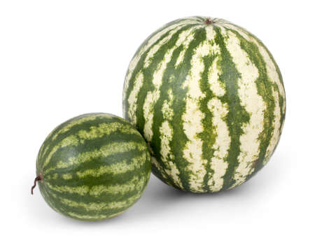 big and small: Big and small watermelon isolated on white background Stock Photo